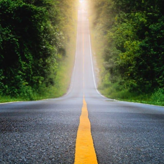 Eine Straße mit einem gelben Mittelstreifen führt zwischen Bäumen vom Betrachtenden weg zum Horizont.