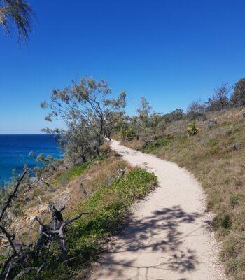 Ein schmaler Weg am Meer entlang.