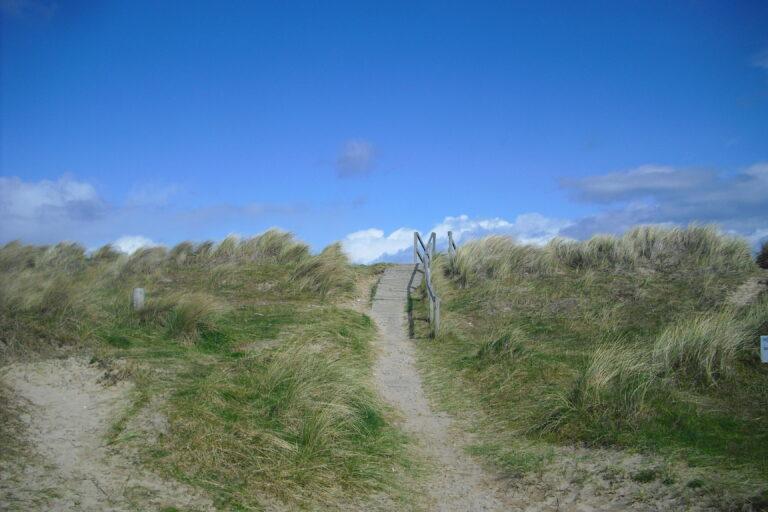 Ein Weg der auf eine Düne hinaufführt, dahinter blauer Himmel.